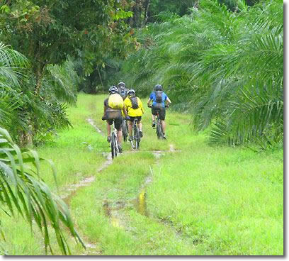 Koh Yao Noi biking tour