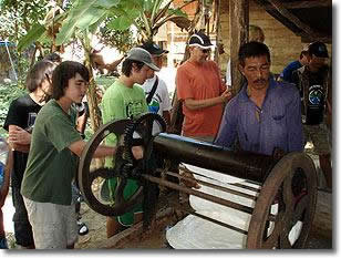 rubber tree processing